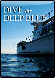 DIVE THE DEEP BLUE